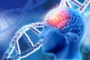 atminas traucejumi alcheimera slimiba gkneiroklinika informācija