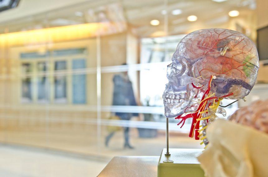 galvas un kakla asinsvadu izmeklesana gk neiroklinika informācija